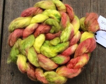 Tropical Flower - handdyed BFL top 3.5 oz