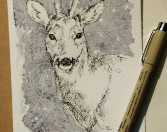 Roe deer greetings card original pen drawing one off wildlife art, an original pen and watercolour greeting card of a roe deer