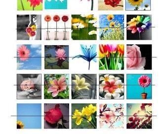 Colorful Flowers- 25 DIY Scrabble Tile Images