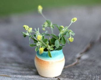 Miniature pottery - assorted mini planters and pots in white clay, artist's choice glaze - ONE POT