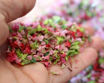 Tiny flowers-Sinensis flower confetti-1/3 cup bag-resin jewelry supplies-wedding supplies