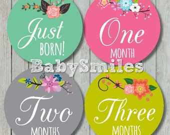 FREE GIFT Monthly Baby Stickers Baby Month Stickers Baby Girl Month Stickers Monthly Bodysuit Stickers Monthly Milestone Sticker Floral