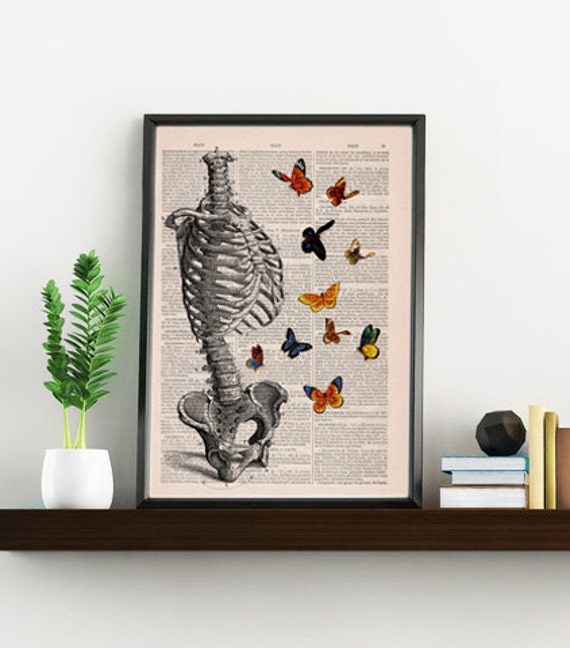 Human Skeleton Torso full of butterflies. Anatomy Print gift - Anatomical decoration- science & anatomy art, SKA095