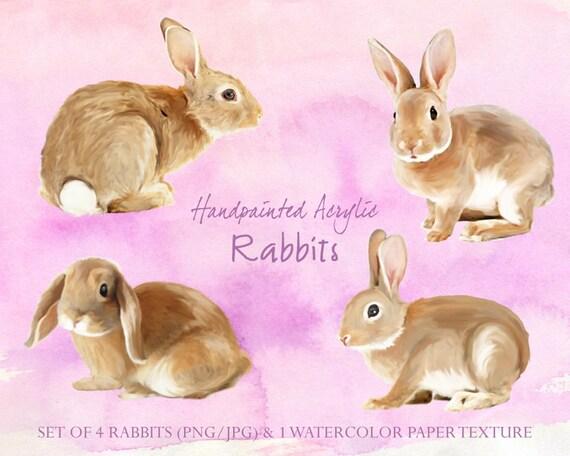 Digital Clipart, acrylic clipart , bunny clipart , rabbit clipart,  nursery clip art, Hand Painted Clip Art - Hand painted Acrylic Rabbits