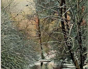 Louisville Kentucky Bargrass Creek near Cherokee Park Vintage Postcard 1908