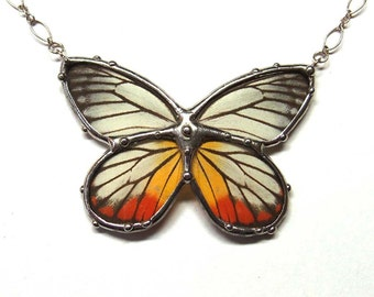 Real Butterfly Necklace - Jezebel Butterfly Necklace - Great Present for a Nature Lover