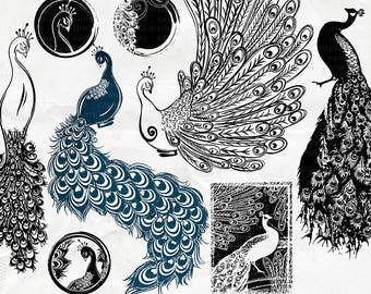 Peacock Clip Art, Printable Image Transfer Sheet,  PNG ClipArt + Photoshop Brush, Peacock Silhouette, Bird Image, Digital Stamp Download