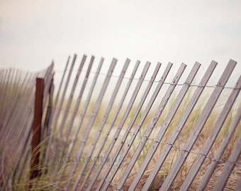 beach photography / fence, wood, neutral, oatmeal tones, new england, coast, lean / fence / 8x10 fine art photo