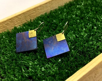 Titanium and silver925 earrings