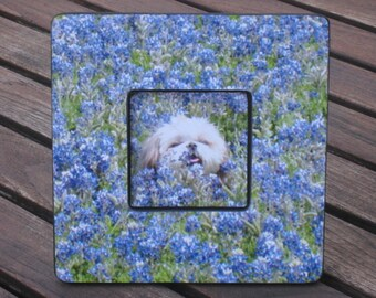 """Pet Memorial Picture Frame, Personalized Pet Memorial Picture Frame, Custom Cat Frame, Pet Collage Picture Frame 8"""" x 8"""", Unique Gift"""