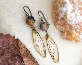 Niobium Earrings, Nature Lover Gift For Her,  Cicada Wing Earrings, Insect Jewelry, Nature Inspired, Eco Resin, Cicada Jewelry