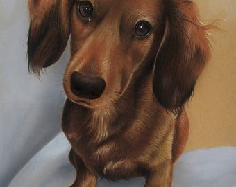 CUSTOM Dog Drawing From your photo - 8x10 -  Realistic Hand drawn fine art - Color portrait, pastels - Canine, Puppy, pet portrait painting