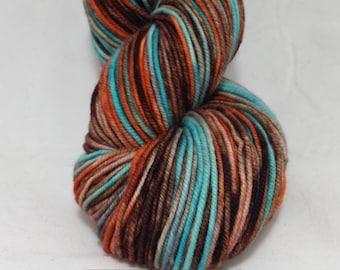 handdyed sw merino yarn DK weight-- OOAK colorway 'Julia' --246 yds.