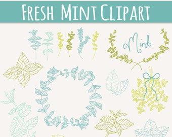 CLIP ART: Mint Sprigs // Photoshop Brushes // Hand Drawn Elements // Herbal Foliage Leaves Twigs Branches // Vector // Commercial Use
