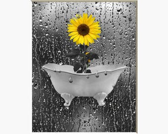 Yellow Gray Sunflower Wall Art Photography  Decor, Sunflower Bathroom Bedroom Wall Art Home Decor Matted Picture