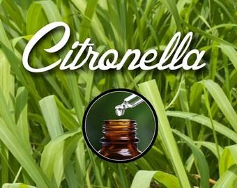 Pure Citronella Essential Oil for Diffuser, 10ml Euro Dropper Bottle