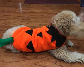 Jack-o'-latern outfit