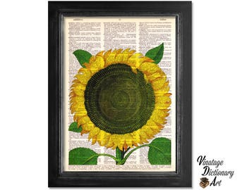 Sunflower - Botanical Art Print on Recycled Vintage Dictionary Paper - 8x10.5