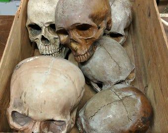 SOLD - Grimm TV Television Series Estate Warehouse Sale Prop - Cast Skull