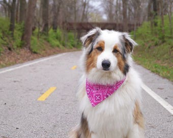 Pink Dog Bandana - Pet Bandana - Cat Bandana - Pink Dog Bandanas - Female Dog Bandana - Dog Bandanna - Girl Dog Bandana - Snap Bandana