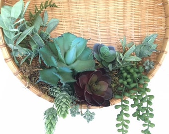 Vintage Basket and Succulents