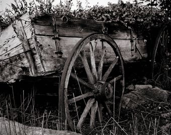 Vintage Black and White Cart - Fine Are Photography