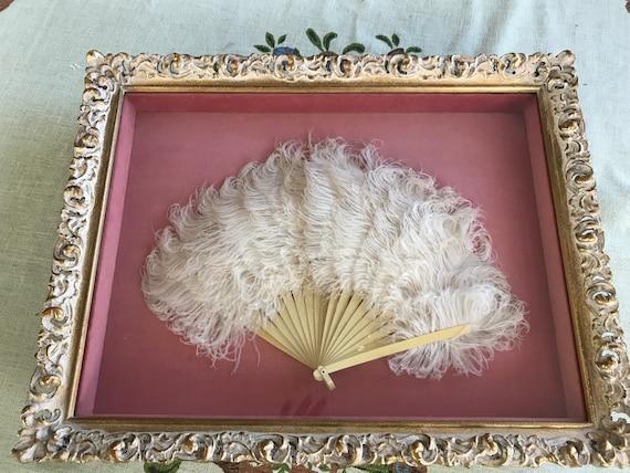 Vintage Shadowbox Framed Ostrich Feather Fan