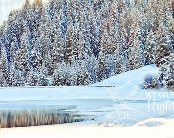 Frosted Lake and Snowy Pines - Digital Download - Cheerful and Bright Fine Art Photography