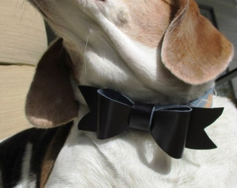 Pet Leather Bow tie
