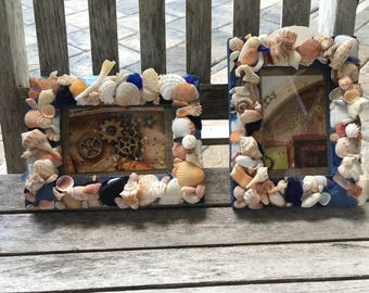 "Florida Gators 5 1/2"" x 3 1/2"" picture frame. Orange and blue sea shells along with sea glass decorate this spirited frame!"