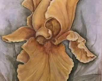 Yellow Iris Painting