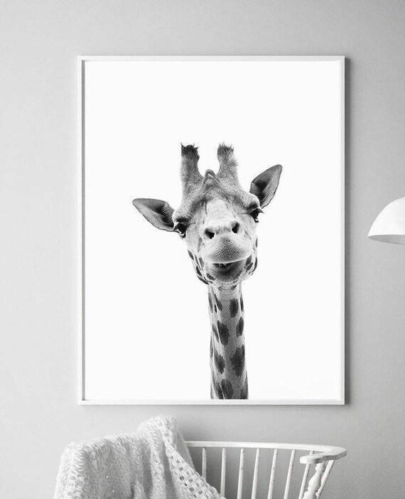 Giraffe print art art prints animal prints giraffe artwork