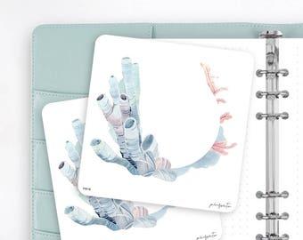 FW16 | Wreath Sticker | Decorative Sticker | Watercolor Sticker | Ocean Sea Sticker | Planner Stickers | Bullet Journal Stickers