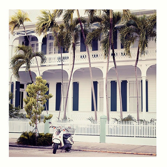 Photography, Art, Wall Art, Photography print, Vespa, Adventure, Travel Photo, Palm Trees