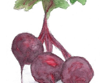 Beets / Greeting Card / Thank You Note