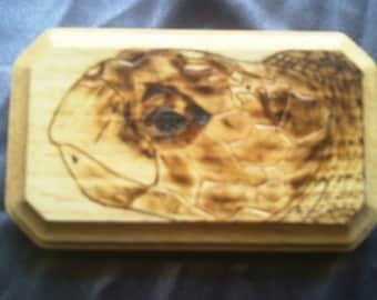 Sea Turtle Wood Burning