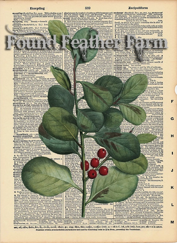 """Vintage Antique Dictionary Page with Antique Print """"Leaves and Berries"""""""