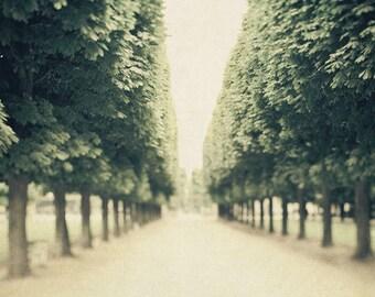 """Paris Photography, Luxembourg Garden, Paris Park, Fine Art Photography Print, Green Trees, Paris Print, 8x10, """"Parks and Recreation"""""""