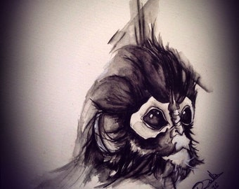 Capuchin - Baby Monkey