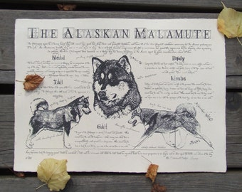 Antique styled dog standard - Alaskan Malamute