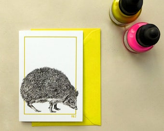 Hedgehog illustrated greeting card, A6 natural history-inspired fluorescent card