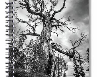 Spiral Notebook, Wicked Tree Art, Haunted Forest, Black White, Old Tree Photography, Stormy Landscape, Writing Journal, Planner, Blank Book