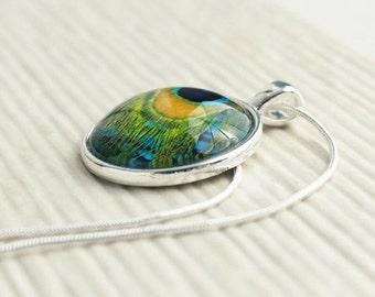 Glass Pendant - Peacock Jewelry - Picture Necklace - Peacock Glass Pendant (GPP3)