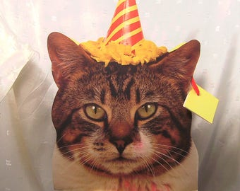 Large Party Hat Tabby Cat Party Gift Bag for Gifts or Product Packaging