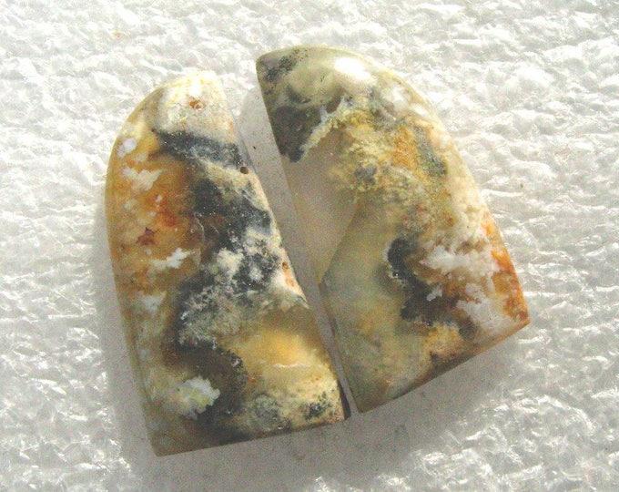 Plume Agate long earring cabochons