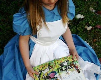 Alice in Wonderland Dress size 2-6 Child's Size Alice Dress