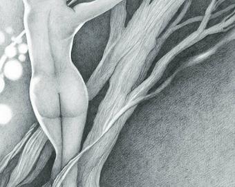 "12x18"" Giclee Print of Daphne-Greek Mythology"