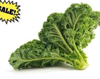 Organic Kale Seeds *Premier* ~w/Beneficial Bacteria/Bulk Available~