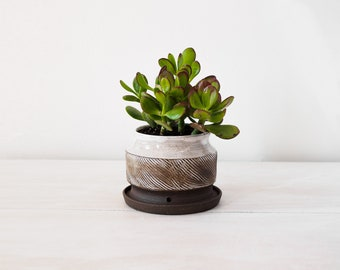 Ceramic Planter with Built-in Drainage Tray