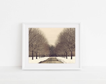 Digital Download, Digital Print, Original Photography, Wall Art, Home Decor, Printable, Winter in NY, Winter Print, Trees in Winter, NY Park